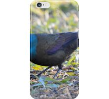 I Spy iPhone Case/Skin