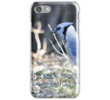 Jay Walkin iPhone Case/Skin