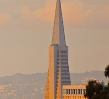 Transamerica Pyramid by fitch