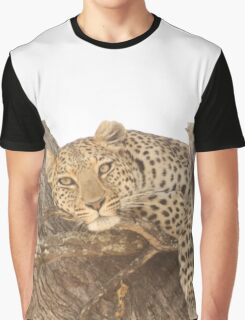 Spotted in Tree Graphic T-Shirt