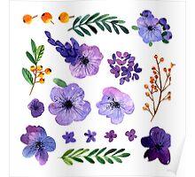 Floral set. Poster