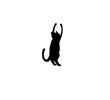 Black Cat Playing by DavidsRedBubble