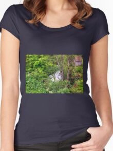 Spring meets winter in the Alps Women's Fitted Scoop T-Shirt