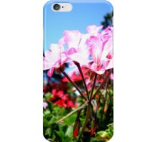 Halifax Public Gardens, Nova Scotia, Canada iPhone Case/Skin