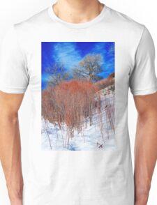 Winter in Colorado Unisex T-Shirt