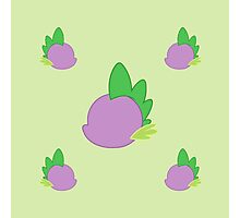 My little Pony - Spike Cutie Mark Special V3 Photographic Print