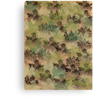 Muted Pacific or Red Silver Fir with Shrubs  Canvas Print
