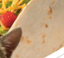 Cat in a Taco Sticker