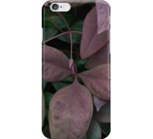 """Blush Pink Nadina"" by Carter L. Shepard""  iPhone Case/Skin"