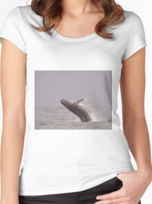 Whale in Galapagos island Women's Fitted Scoop T-Shirt