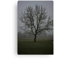 Foggy Tree Canvas Print