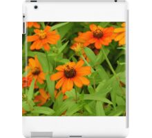 """Daisies"" by Carter L. Shepard""  iPad Case/Skin"