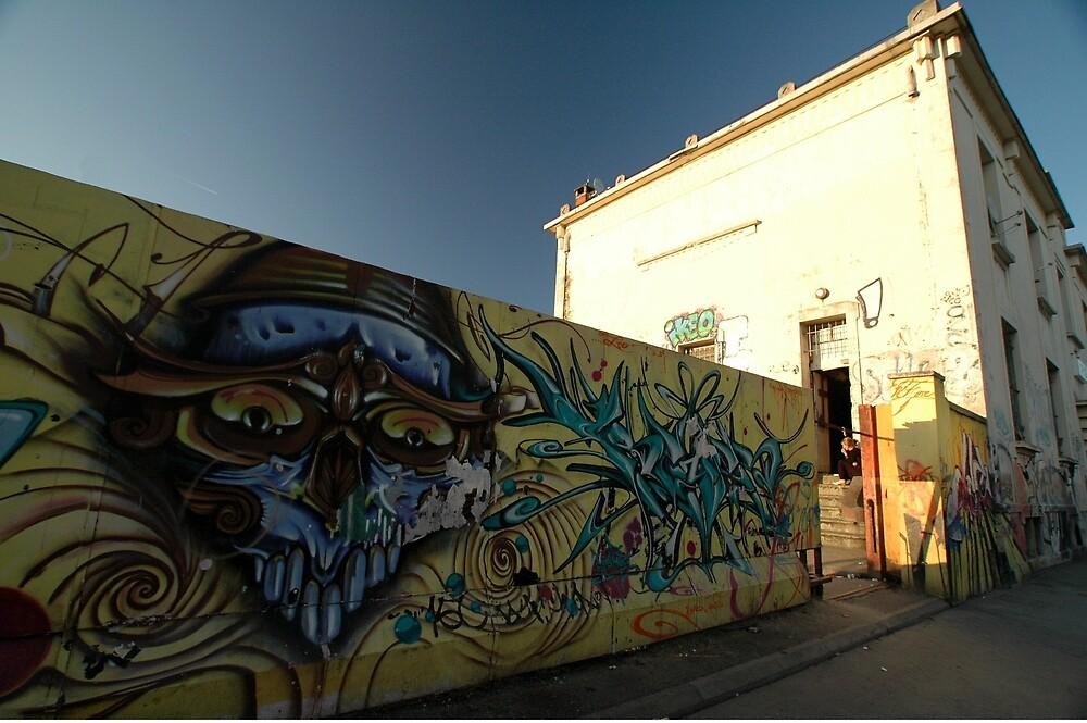 Grafitti - Chrome Face, Bordeaux, France, Europe 2012 by muz2142
