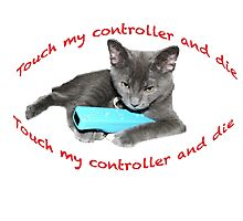 Cat and Wii Photographic Print