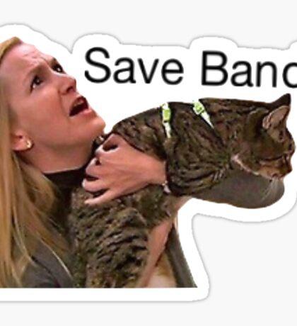 Save bandit Sticker