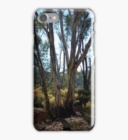 Eucalypt's and Wattle by Lorraine McCarthy iPhone Case/Skin