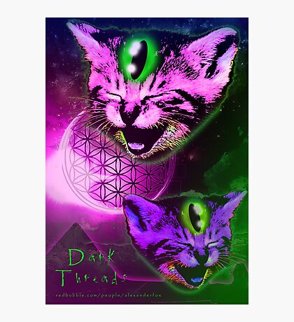 Cats of The Astral Plane  Photographic Print