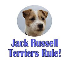Jack Russell Terriers Rule! Photographic Print