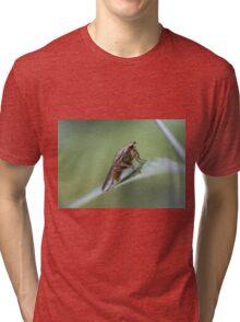 Alien? Tri-blend T-Shirt