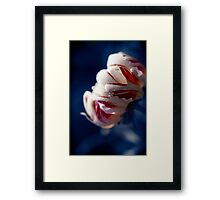 Drops White Flower Framed Print