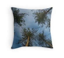 Look up in to the Trees Throw Pillow