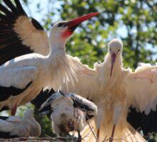 Stork Family Sticker