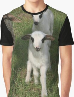 Ewe and Three Lambs Making Eye Contact Graphic T-Shirt