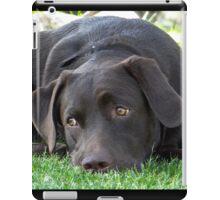 Labrador Lorenzo iPad Case/Skin