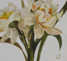 Wishing You A Wonderful Day Double Narcissi In A Bouquet Sticker