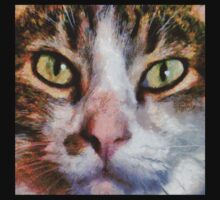 Long Haired Tabby Cat Close Up Portrait One Piece - Short Sleeve