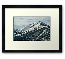 Snowy Mountain Forest Framed Print