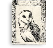 Monochrome Barn Owl Print Canvas Print