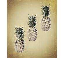 Mocha pineapples Photographic Print
