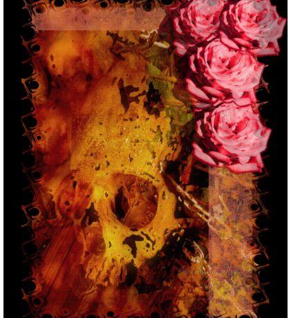 Where the Wild Roses Grow Sticker