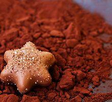 Chocolate by artsandsoul