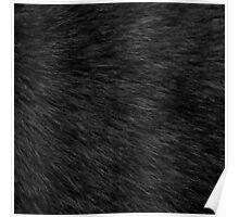 BLACK CAT FUR Poster