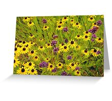 Yellow echinacea flowers Greeting Card
