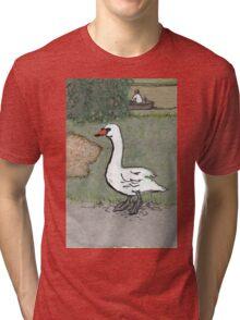 swan in prospect park Tri-blend T-Shirt
