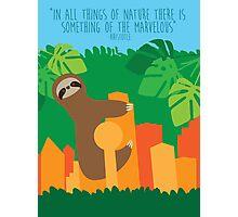 Dallas Animals- Sloth Photographic Print