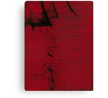 Reddened Black Maple  Canvas Print