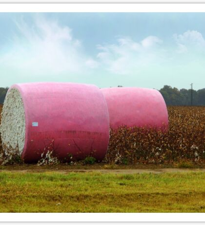 The Breast Cancer Awareness Pink Cotton Bales Sticker