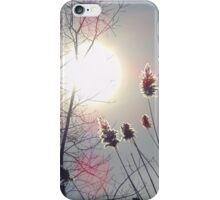 Winter sun iPhone Case/Skin
