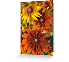 Orange black eyed susans Greeting Card