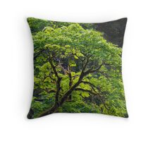 Signs of Early Spring - Vine Maple on the Elk River Throw Pillow