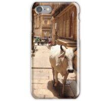 cow in jaisalmer, india iPhone Case/Skin