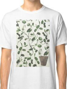 Hoya Carnosa / Porcelainflower Classic T-Shirt