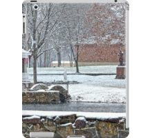 Duck Pond in the Snow iPad Case/Skin