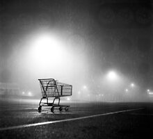 Shopping Cart by Daniel Regner