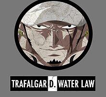 One Piece : Trafalgar D. Water Law by bigsermons