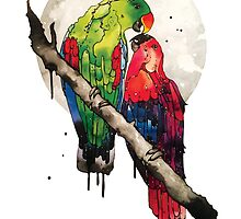 Eclectus Parrots by AandDbyJB